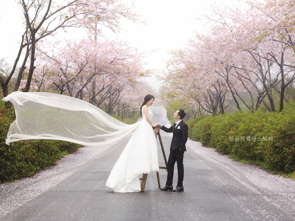 Korea Pre Wedding Photoshoot Review Jeju Luce